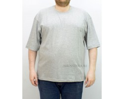 Мужская футболка GLACIER 1000-2