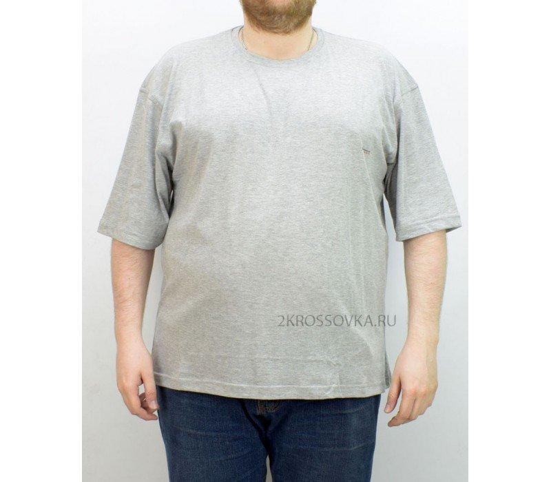 Купить Мужская футболка GLACIER 1000-2 в магазине 2Krossovka