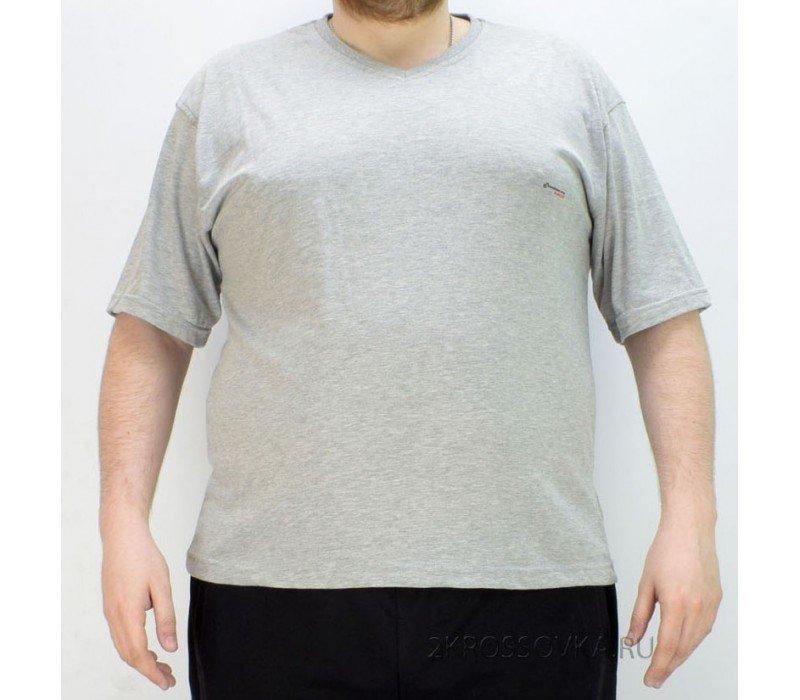 Купить Мужская футболка GLACIER 1001-2 в магазине 2Krossovka