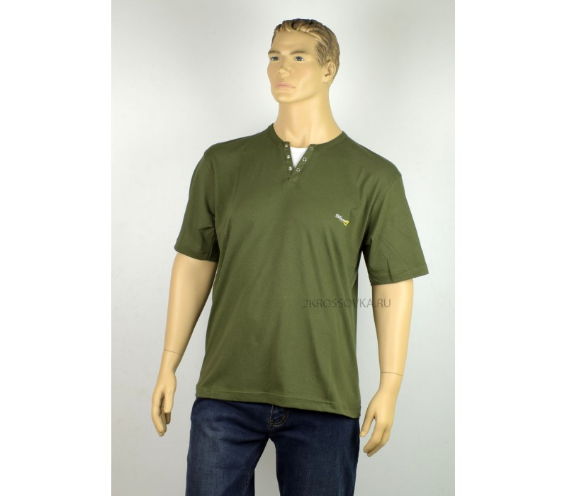 Купить Мужская футболка GLACIER 1012-4 в магазине 2Krossovka