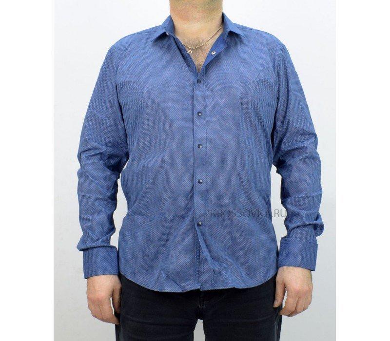 Купить Рубашка Palmary Leading TL-553-4 в магазине 2Krossovka
