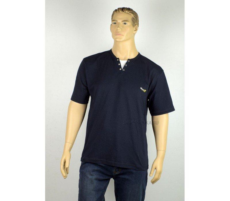 Купить Мужская футболка GLACIER 1012-3 в магазине 2Krossovka