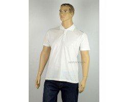 Мужская футболка-поло GLACIER 15197-2