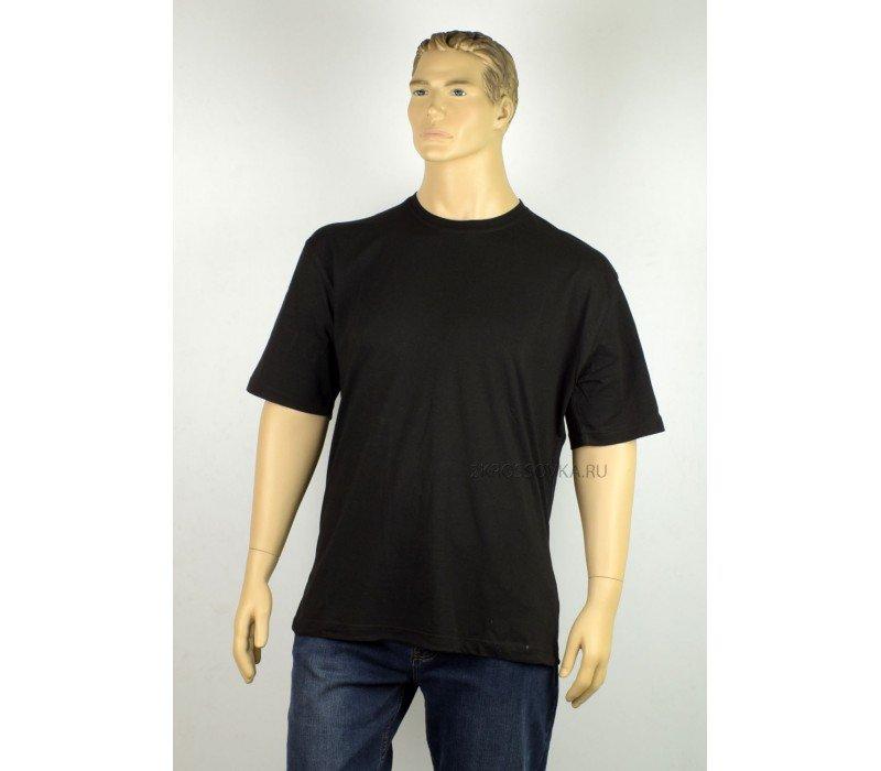 Купить Мужская футболка GLACIER 0217 в магазине 2Krossovka