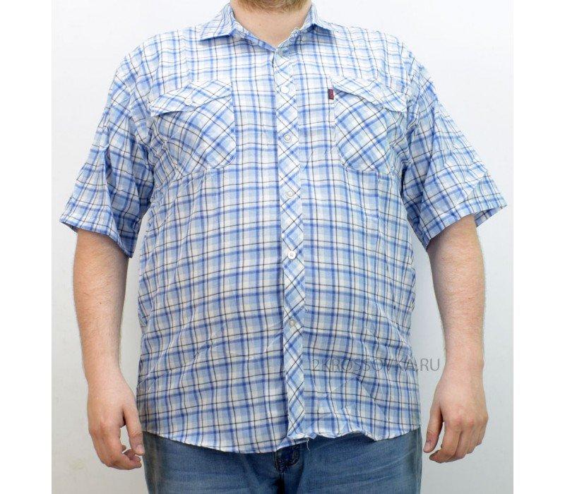 Купить Рубашка Shangjun 344-1 в магазине 2Krossovka