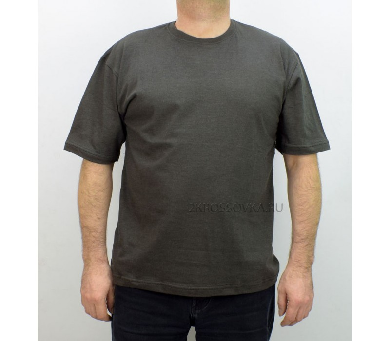 Купить Мужская футболка GLACIER 0217-4 в магазине 2Krossovka